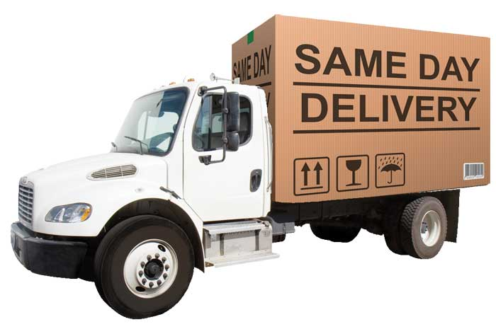 same-day delivery significado