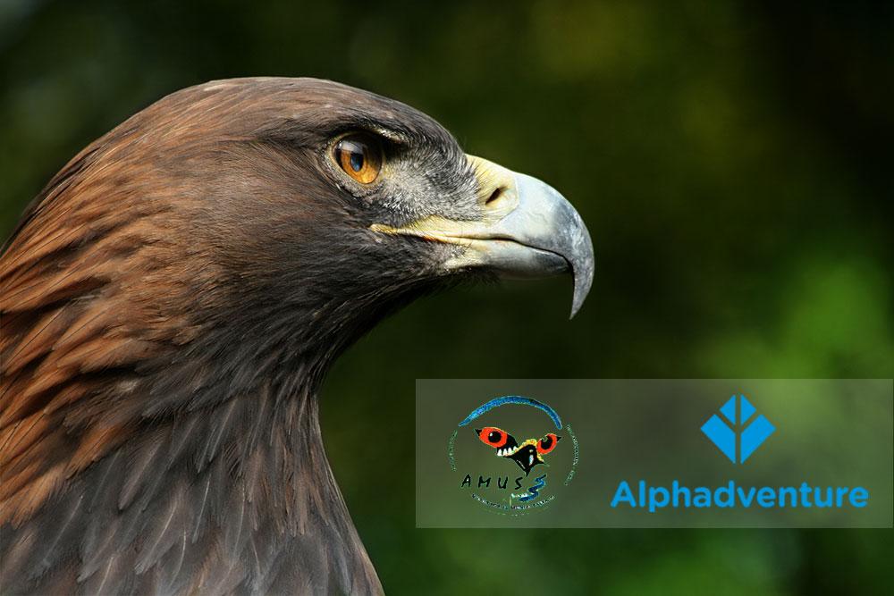 Alphadventure y AMUS por la vida salvaje